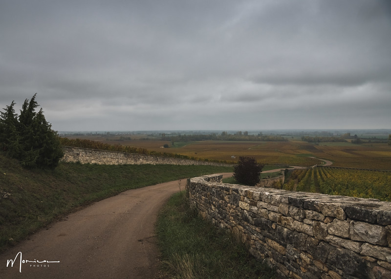 2019-10 - Burgundy Vacation-2752_edit.jpg