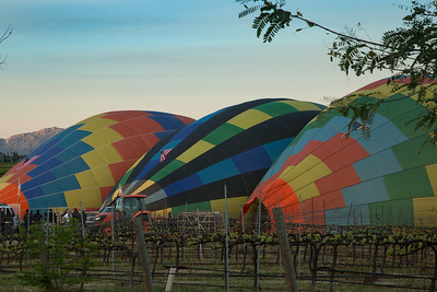 Temecula Wine Country Hot Air Ballon ride