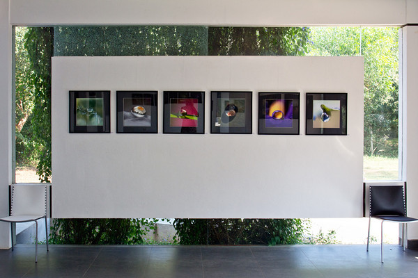Galerie d'Art Citadines, Auroville, India 2013