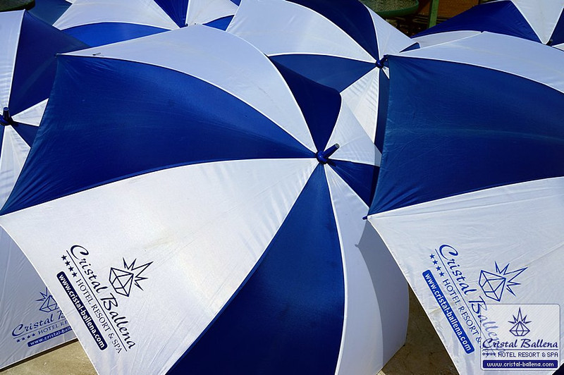 Cristal-Ballena-Umbrellas1_0600px-wm.jpg