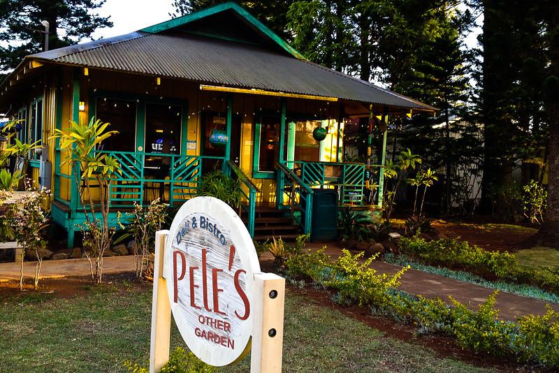 petes other garden.jpg