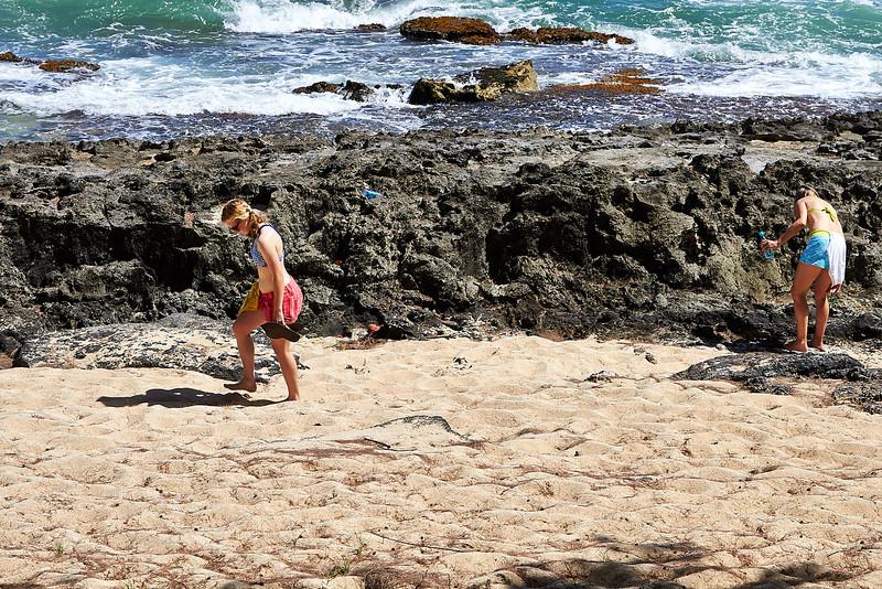 Hawaii-IMG_2170_.jpg
