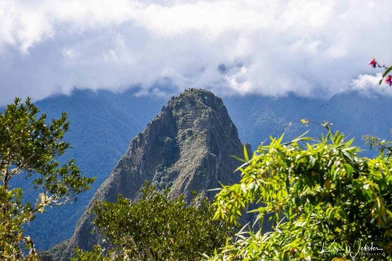2018 Machu Picchu-57.jpg