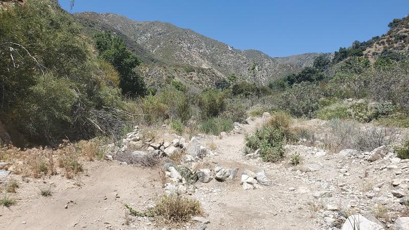 Blue Bug Trail,  gap jump with go-around