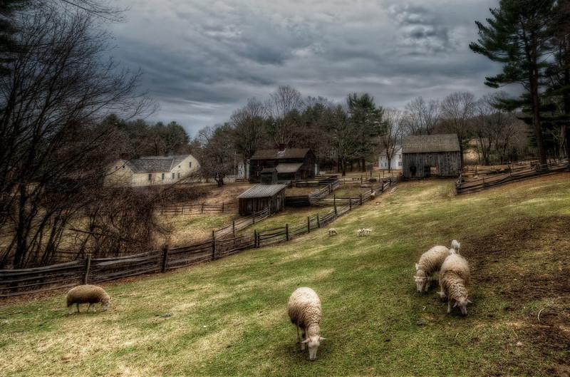 SheepFarm.jpg