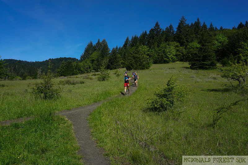 20190504.gw.mac forest 50K (51 of 123).jpg