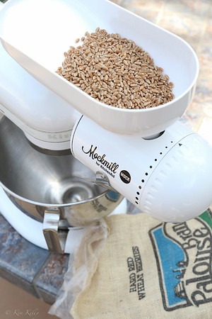 Mockmill Grinder with whole wheat berries