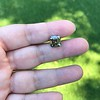 4.57ct Fancy Dark Greenish Yellow Brown Asscher Cut Diamond GIA 16