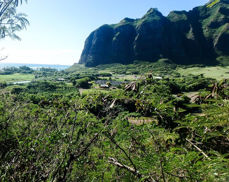 Hawaii- North Shore 2017-8060013.jpg