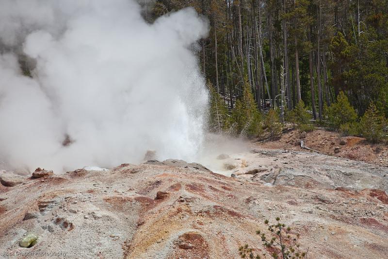 Yellowstone-39.jpg