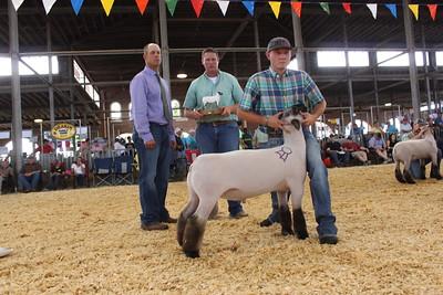 Thus-Swine Barn-Champs
