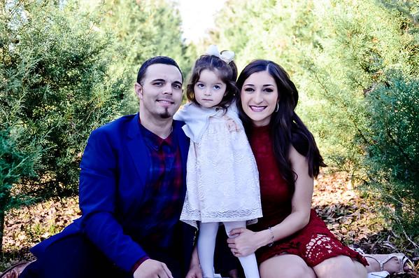 Burbank/Walker Family Christmas