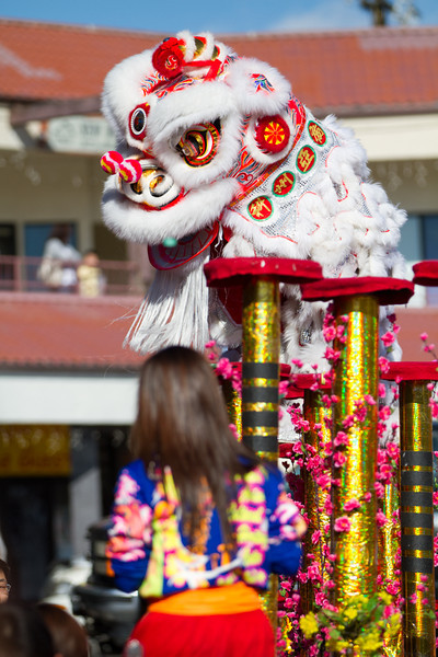 Pre Chinese New Year 2013 (20 of 24).jpg
