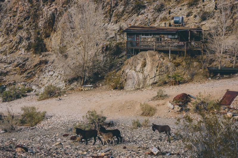 086-Death-Valley-Mountain-Cabins.jpg