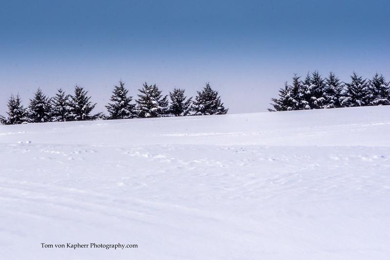 Tom von Kapherr Photography-7468.jpg
