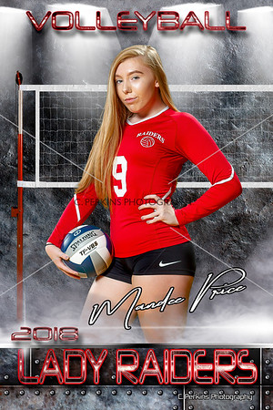 Volleyball Individual Poster