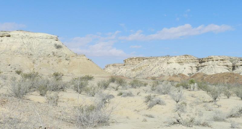 painted dunes7.jpg