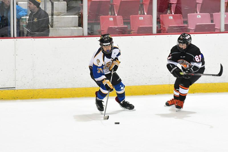 Orda-CANAM-CANAM Hockey 1980 Rink-id224951983.jpg
