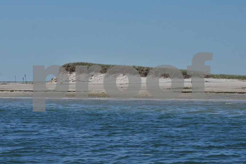 Pictues from cape and father day 068.JPG
