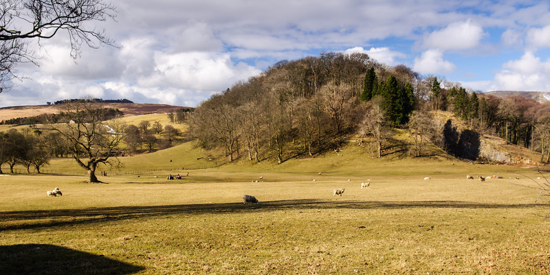 Bowland hills