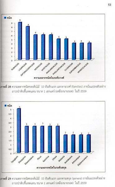 Phangan trees from Thai research 2.jpg