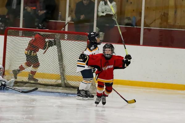 Starhawks Hockey
