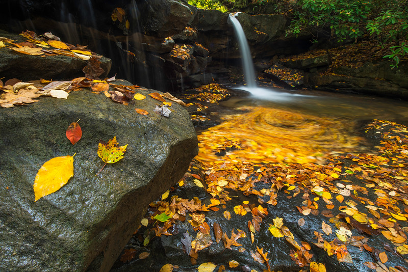 Three Leaves Falls Swirl Ohiopyle Jonathan Run.jpg