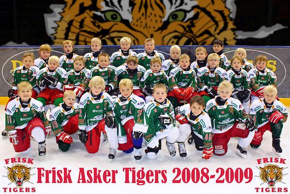 Frisk Asker Tigers 2008-2009 Klubbilder