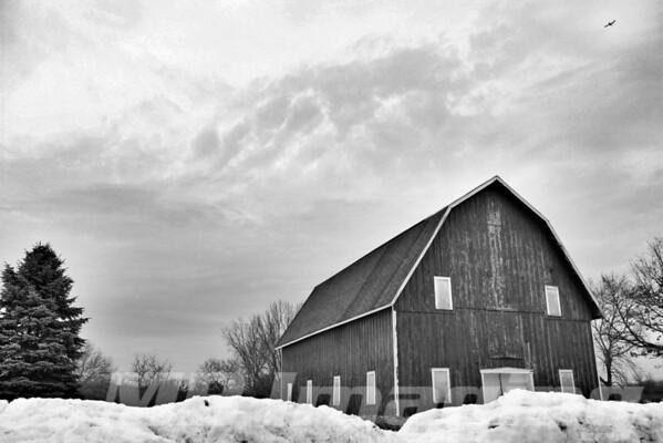 Old Barn - Leroy Oaks Forest Preserve