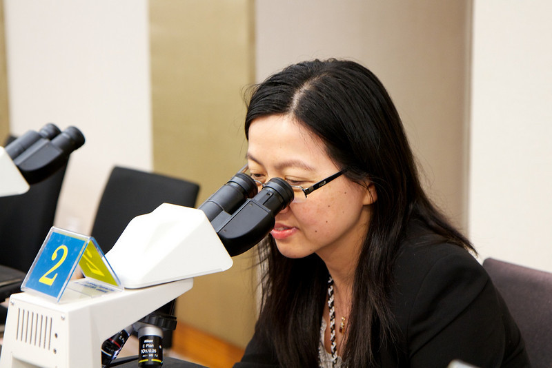 Day 2, 30th April 2011. Dr Lily Wong setting her sight.