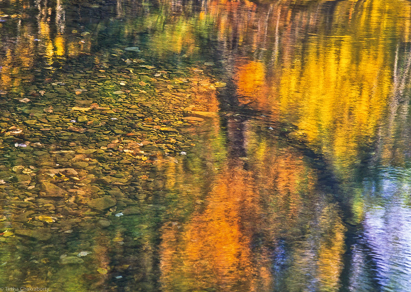 Fall Reflections#1.jpg
