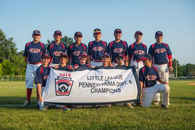 Little League Baseball 2014