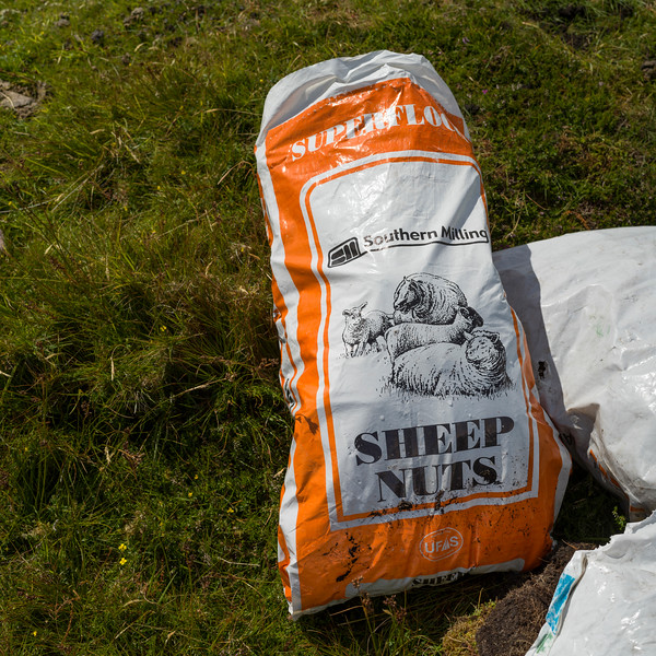View of sack of sheep nuts on pasture field, Brandon Point, Murirrigane, Brandon, County Kerry, Ireland