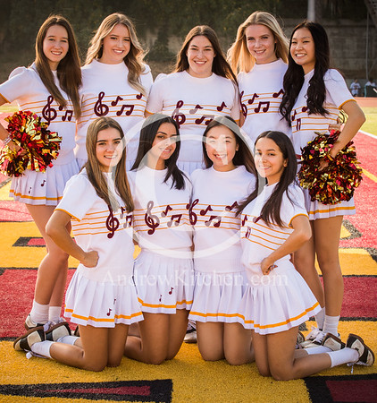 LCHS Cheer 2019-2020