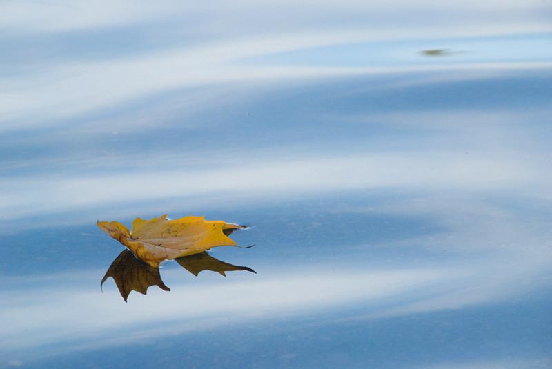 Floating-I.jpg