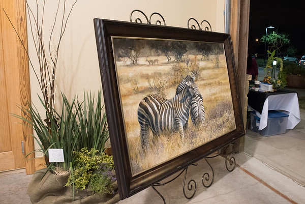 Art Safari 111315
