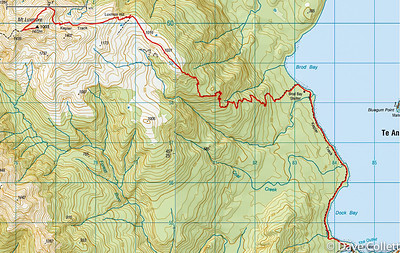 2013-03-28: Mt Luxmore and Eglinton Valley