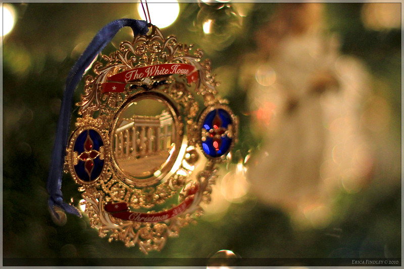I like trying to get interesting close-ups of ornaments on the trees!