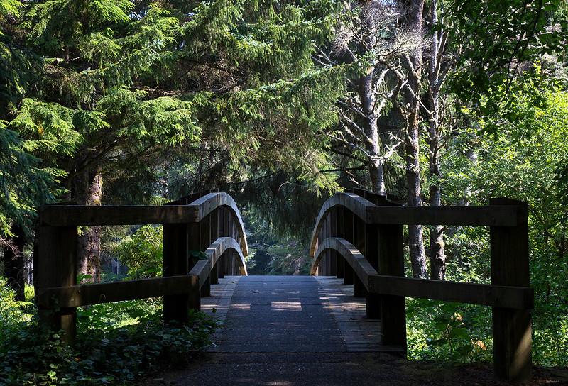 woods bridge.jpg