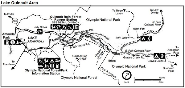 Olympic National Park (Lake Quinault Area)