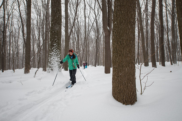 Coopers Rocks Cross Country Skiing