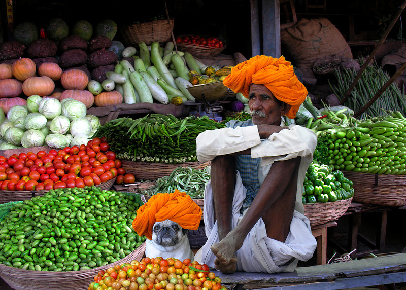 GREEN GROCERS - RAJASTHAN, INDIA
