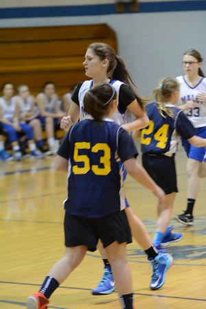 Winter2015 - Shelby JHS 8thGirls Basketball