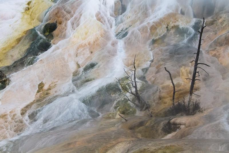 Yellowstone5 151.jpg