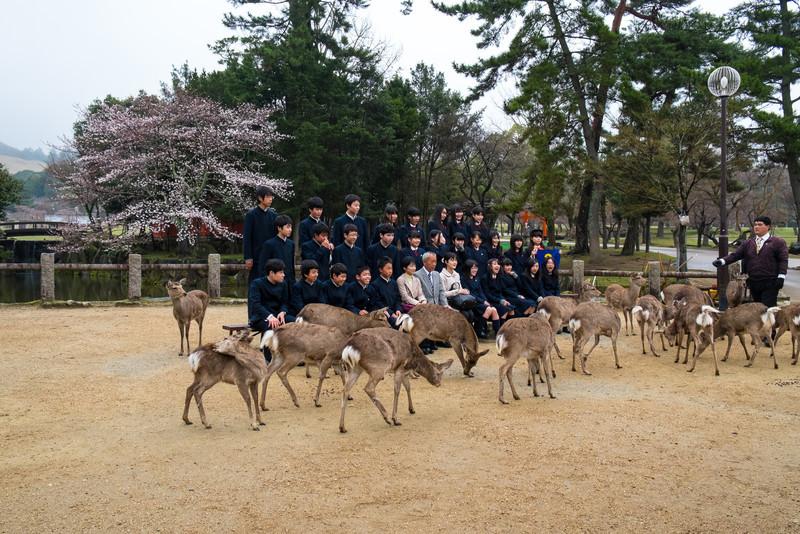Nara Day 5 (326 of 374).jpg