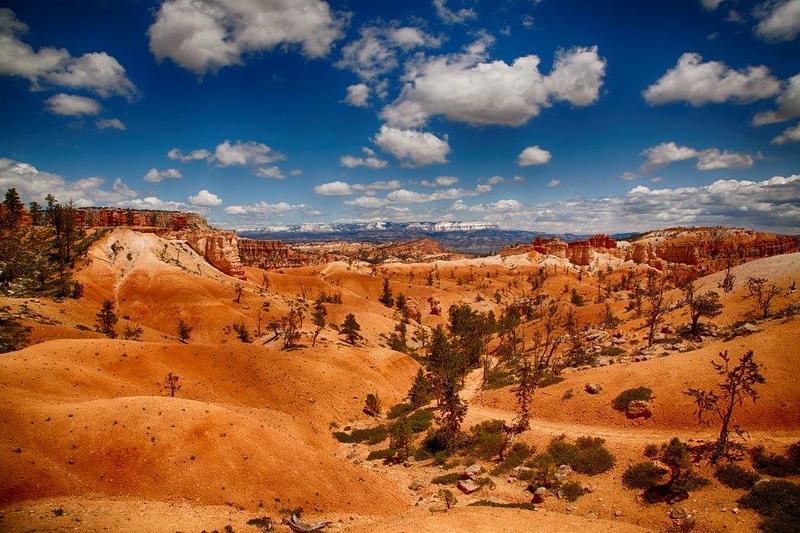 Navajo Trail 8041_HDR (2).jpg