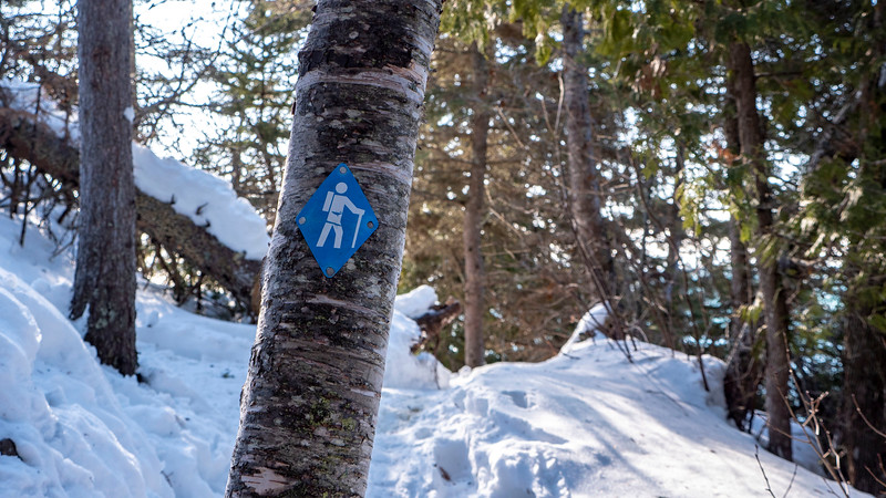 Sleeping-Giant-Provincial-Park-Winter-Hiking-11.jpg
