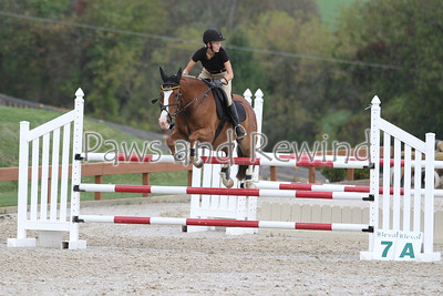 Junior/Amateur Jumper