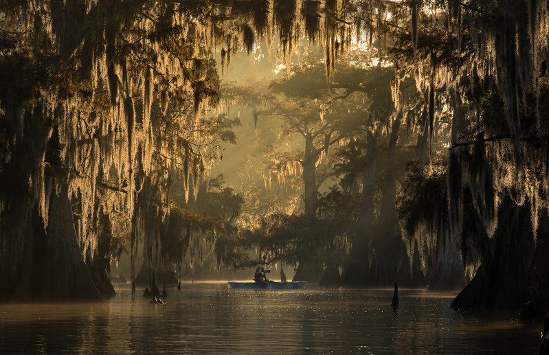 Cypress_Swamps_1117_PSokol-1970-Edit-2.jpg