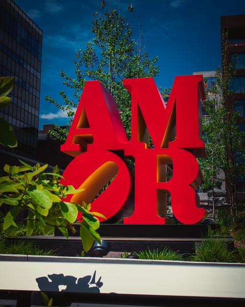 210 (8-8-19) Amor-1 (1).jpg